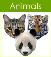 Masks Animals