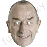 David Lloyd BUMBLE Cricket Mask